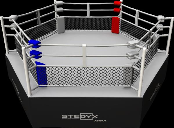Hexagon Stedyx | 0