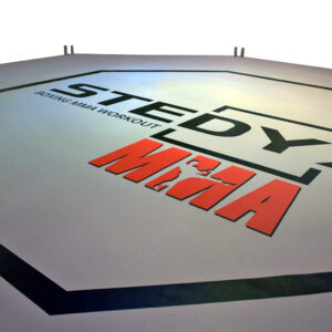 MMA-octagon canvas Stedyx | pvc