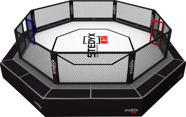 MMA- octagon UFC Rules Stedyx
