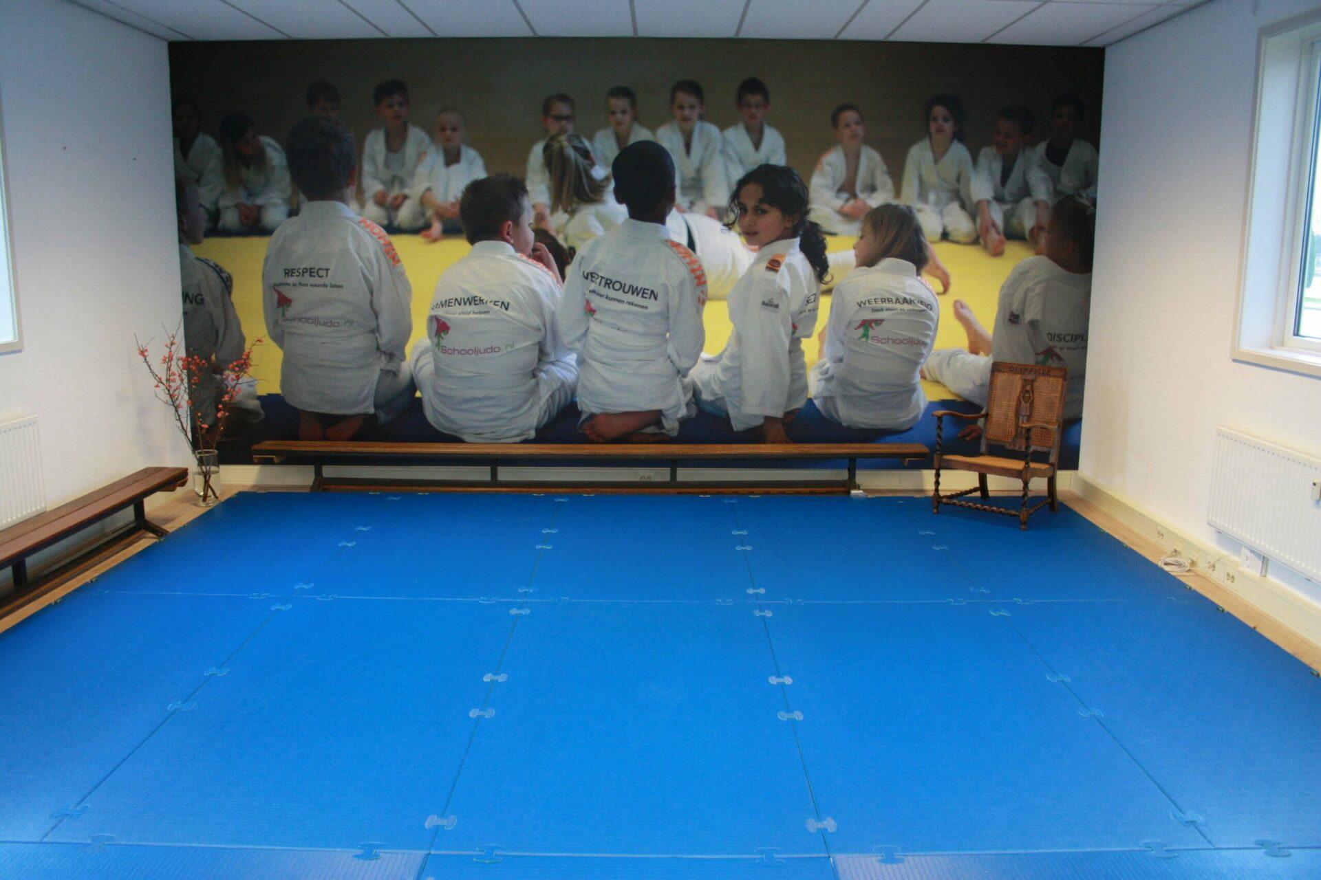 judomat lichtgewicht innovatief